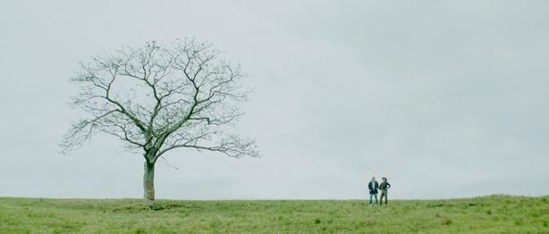 SC05_WS tree-2